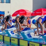 National Swimming Championships Bermuda, June 9 2013-9