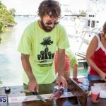 Groundswell Lionfish Tournament Bermuda, July 20 2013-11