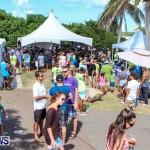 Groundswell Lionfish Tournament Bermuda, July 20 2013-25