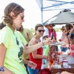 Groundswell Lionfish Tournament Bermuda, July 20 2013-7