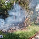 St Davids Brush Fire Bermuda, July 7 2013-10