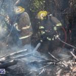 St Davids Brush Fire Bermuda, July 7 2013-11