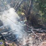St Davids Brush Fire Bermuda, July 7 2013-12