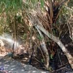 St Davids Brush Fire Bermuda, July 7 2013-4