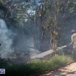 St Davids Brush Fire Bermuda, July 7 2013-5