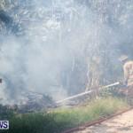 St Davids Brush Fire Bermuda, July 7 2013-6