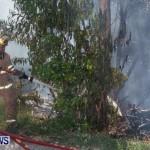 St Davids Brush Fire Bermuda, July 7 2013-8