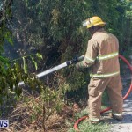 St Davids Brush Fire Bermuda, July 7 2013-9