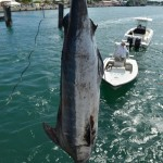 xxxfishing july 4 2013 (8)