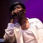 2013 beres hammond concert bermuda dismont (38)
