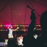 2013 beres hammond concert bermuda dismont (41)