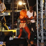 Cup Match Salute Shabba Ranks Alison Hinds Bermuda, July 31 2013 (26)