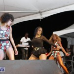 Cup Match Salute Shabba Ranks Alison Hinds Bermuda, July 31 2013 (50)