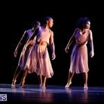 Eric Bean Jr Through the Looking Glass  Bermuda, August 16 2013 (38)