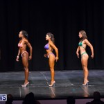 Prejudging Bodybuilding Night Of Champions  Bermuda, August 17 2013-14