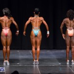 Prejudging Bodybuilding Night Of Champions  Bermuda, August 17 2013-20