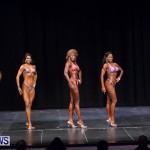 Prejudging Bodybuilding Night Of Champions  Bermuda, August 17 2013-27