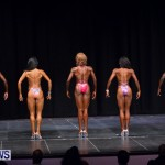Prejudging Bodybuilding Night Of Champions  Bermuda, August 17 2013-29