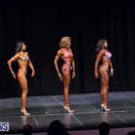 Prejudging Bodybuilding Night Of Champions  Bermuda, August 17 2013-30