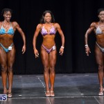 Prejudging Bodybuilding Night Of Champions  Bermuda, August 17 2013-32