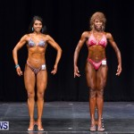 Prejudging Bodybuilding Night Of Champions  Bermuda, August 17 2013-34