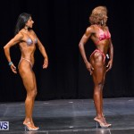 Prejudging Bodybuilding Night Of Champions  Bermuda, August 17 2013-35