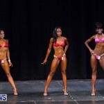 Prejudging Bodybuilding Night Of Champions  Bermuda, August 17 2013-6