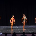 Prejudging Bodybuilding Night Of Champions  Bermuda, August 17 2013-72