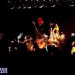 soca vs reggae 2013 bermuda (2)