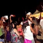 soca vs reggae 2013 bermuda (9)