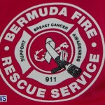 Bermuda Fire Service Breast Cancer Awareness Logo, October 29, 2013-1