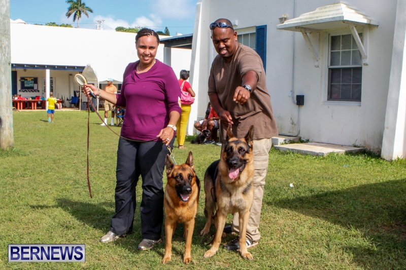 Bermuda-Kennel-Club-BKC-Dog-Show-October-19-2013-57