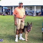 Bermuda Kennel Club BKC Dog Show, October 19, 2013-63