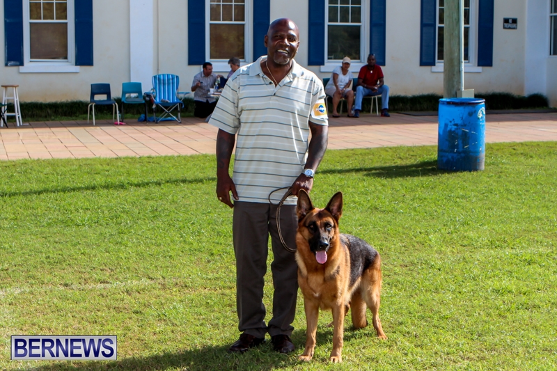 Bermuda-Kennel-Club-BKC-Dog-Show-October-19-2013-84