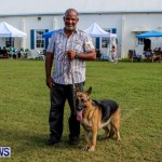 Bermuda Kennel Club BKC Dog Show, October 19, 2013-88