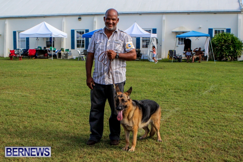 Bermuda-Kennel-Club-BKC-Dog-Show-October-19-2013-88