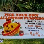Halloween Pumpkin Picking Festival Bermuda, October 24, 2013-2