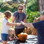 Halloween Pumpkin Picking Festival Bermuda, October 24, 2013-24