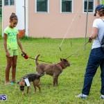SPCA Fun Fair Bermuda, October 12, 2013-6