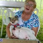 SPCA Fun Fair Bermuda, October 12, 2013-63