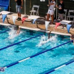 Sharks Sprint Swim Meet Bermuda, October 19, 2013-1