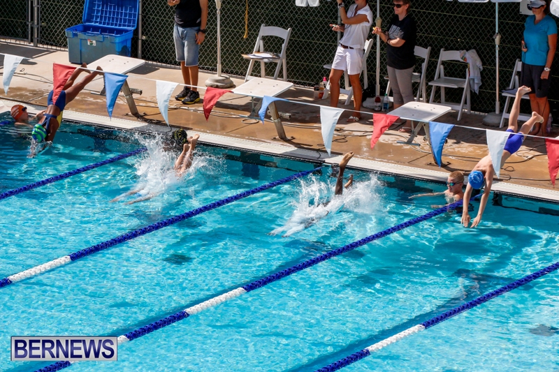 panama city swim meet results hall