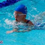 Sharks Sprint Swim Meet Bermuda, October 19, 2013-11