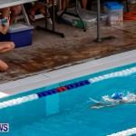 Sharks Sprint Swim Meet Bermuda, October 19, 2013-13