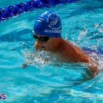 Sharks Sprint Swim Meet Bermuda, October 19, 2013-15