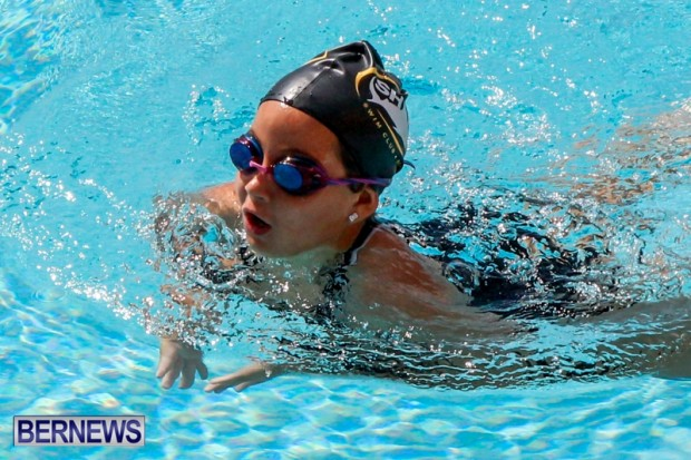 Sharks Sprint Swim Meet Bermuda, October 19, 2013-17