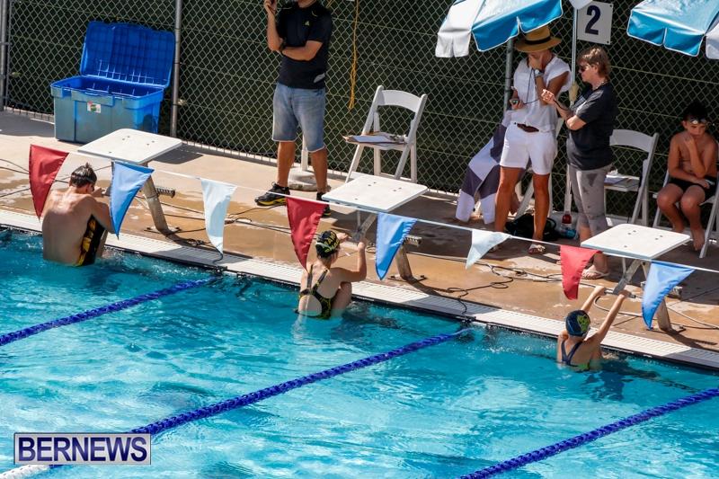 2013 all city swim meet results