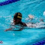 Sharks Sprint Swim Meet Bermuda, October 19, 2013-2