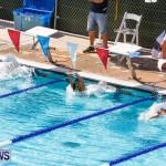 Sharks Sprint Swim Meet Bermuda, October 19, 2013-21