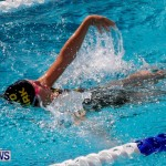 Sharks Sprint Swim Meet Bermuda, October 19, 2013-22